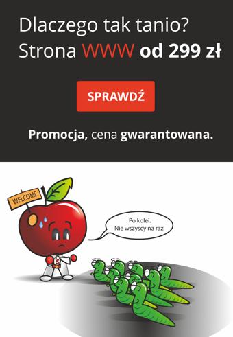 WWW za 299 zł